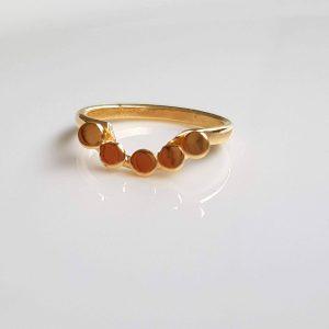 טבעת העיגולים